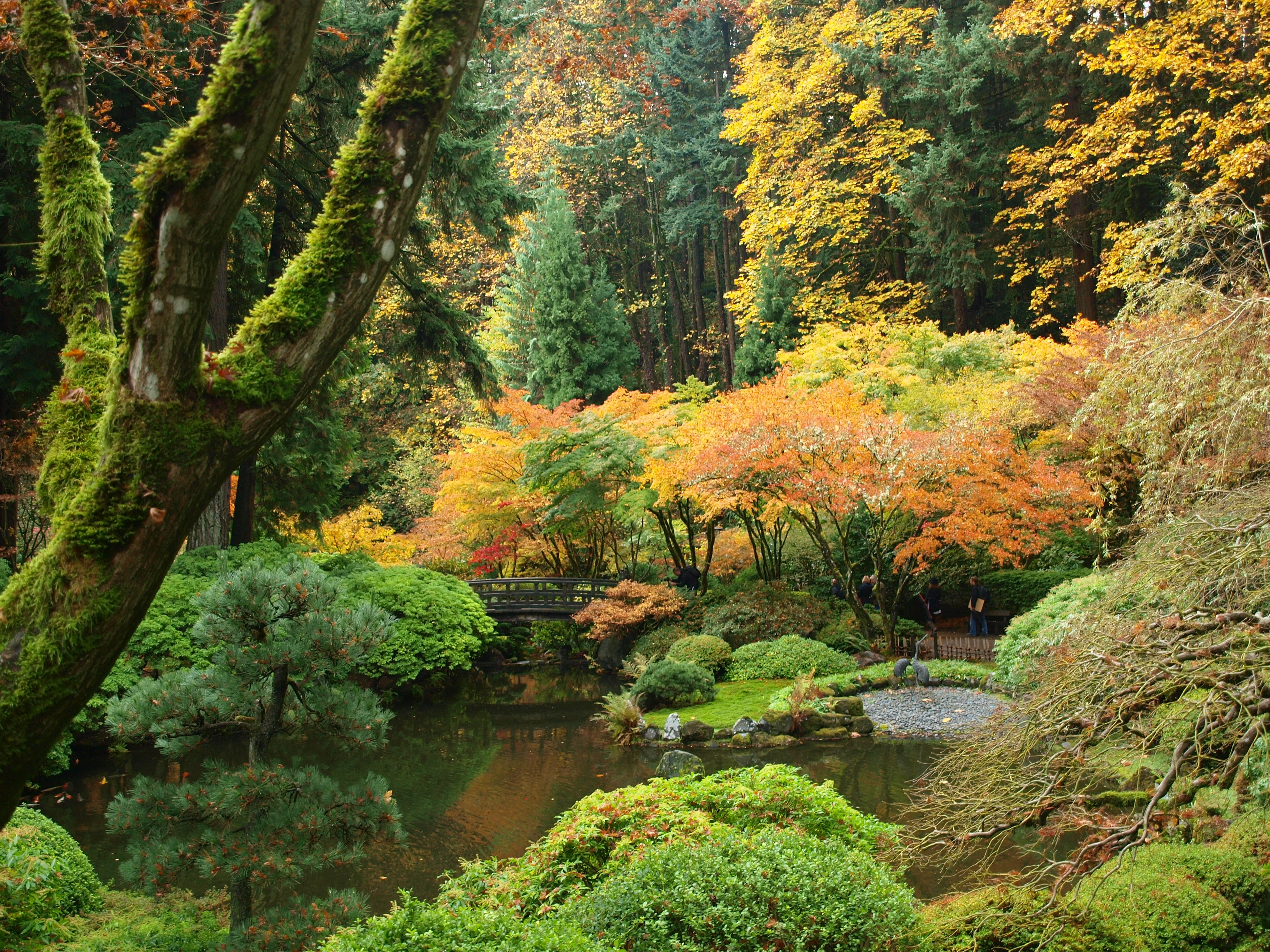 Fall Colors At The Portland Japanese Garden Portland By Bus
